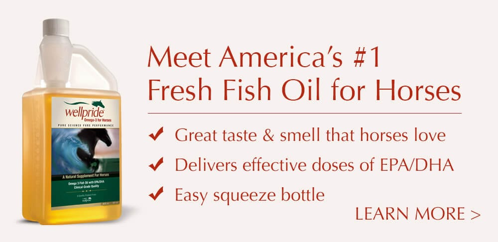 Meet America's #1 Fresh Fish Oil for Hroses