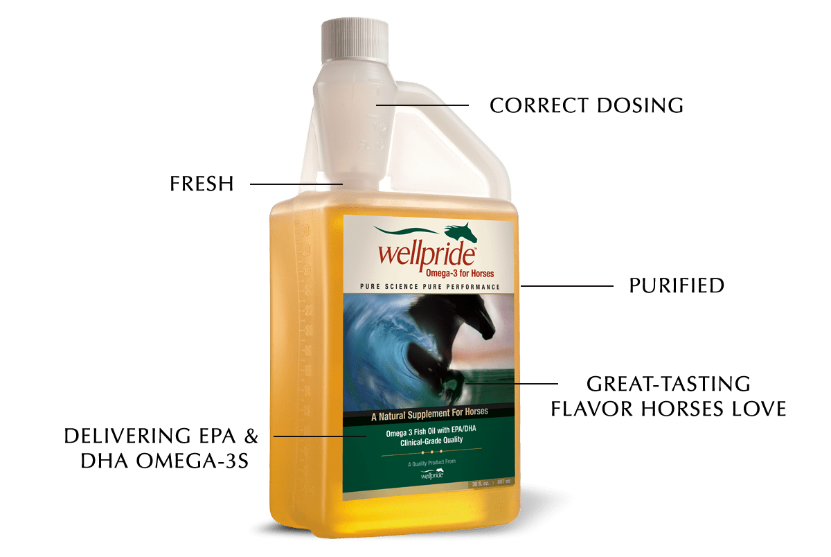 Wellpride fish oil